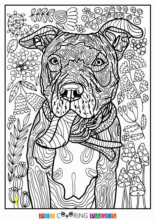 5 Senses Coloring Pages Five Senses Coloring Pages Beautiful Five Senses Coloring Pages Free