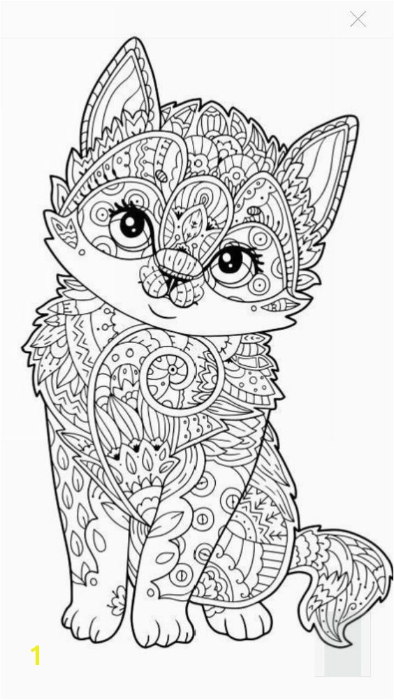 Cute kitten coloring page More eerr Ja