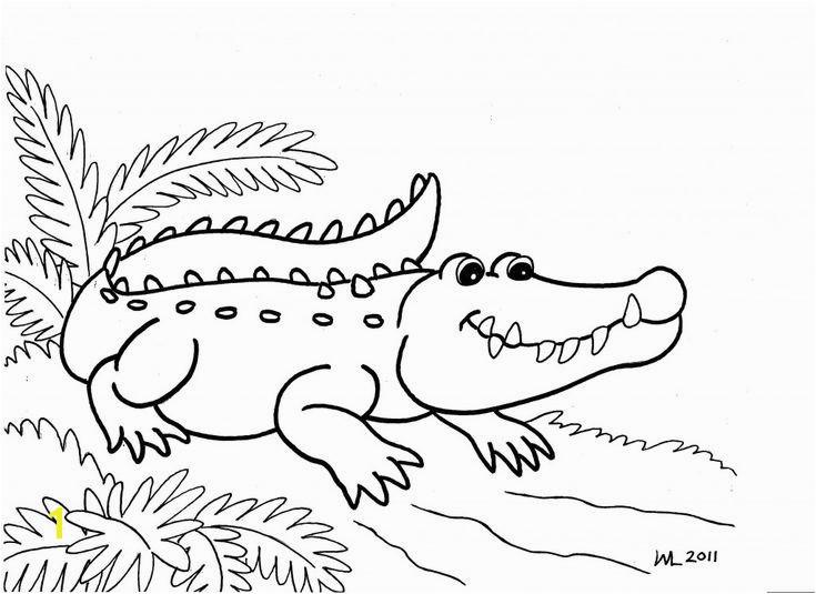 Aligator Coloring Pages Alligator Coloring Pages 107 Best Alligators Pinterest