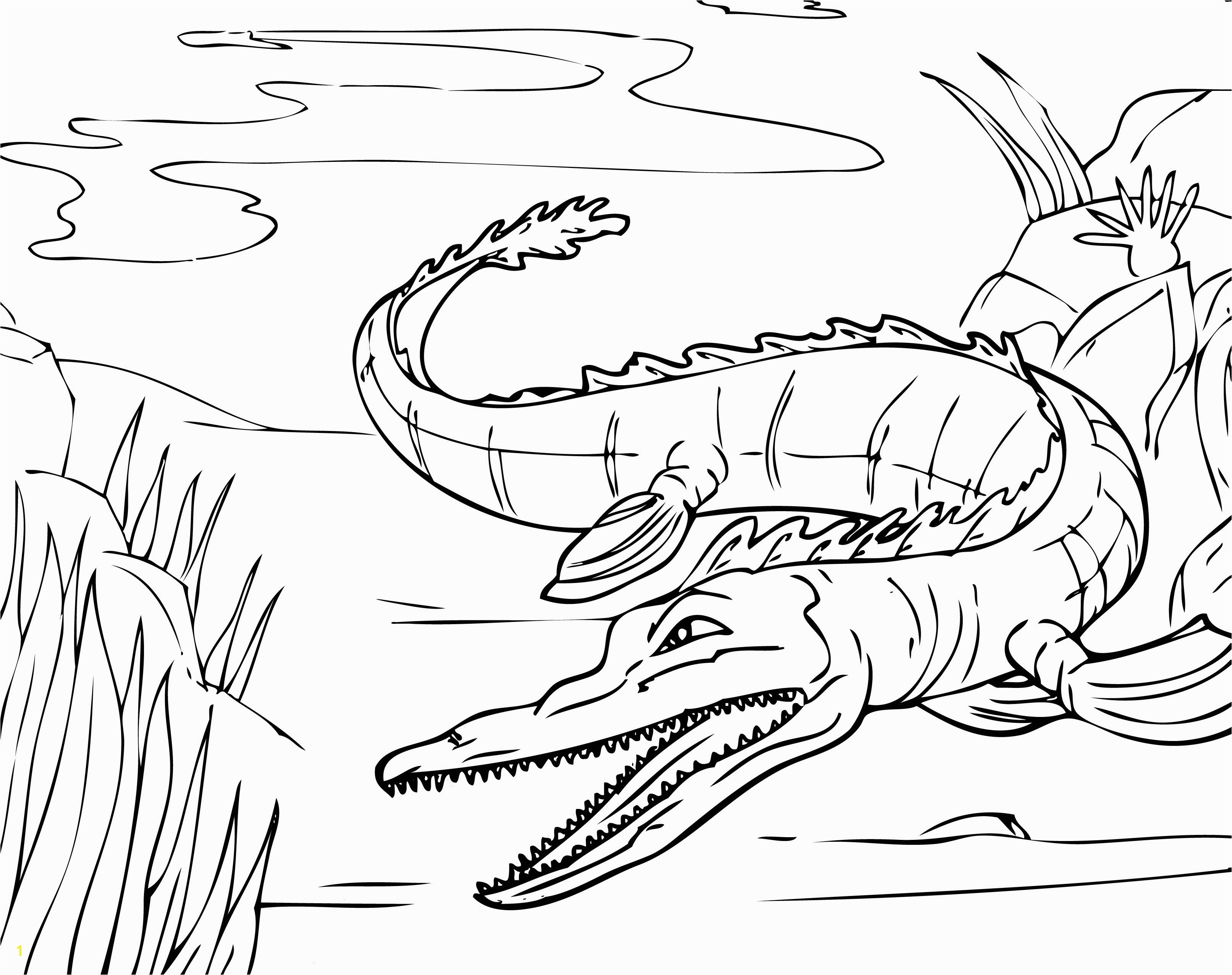 Od Fruits Alligator Coloring Pages Outstanding Alligator Puppet Coloring Sheet Ponent Resume Ideas