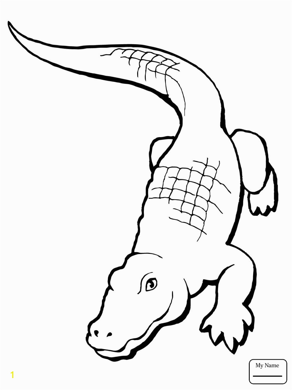 American Alligator Coloring Page Lovely Alligator Drawing Step by Step at Getdrawings American Alligator Coloring