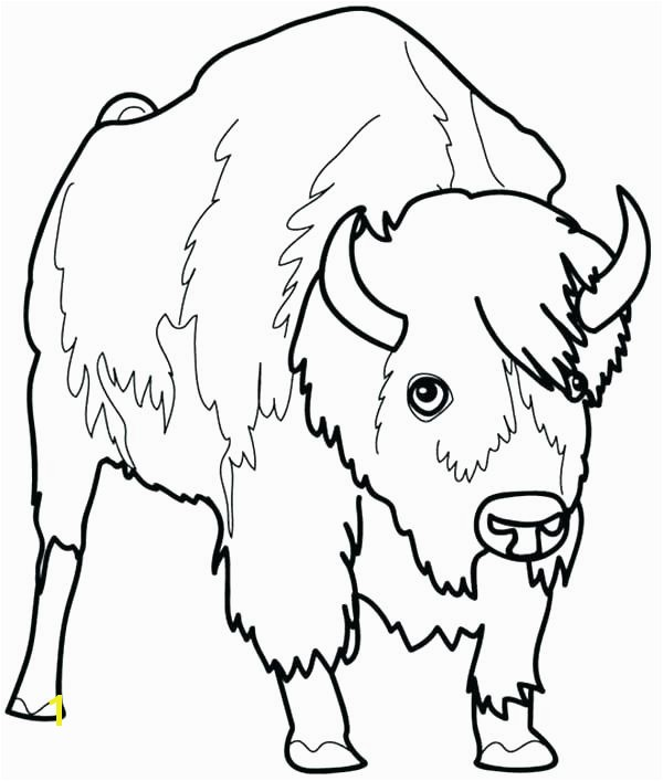 bison coloring page bison coloring page picture of a 4 kids pages free american bison coloring