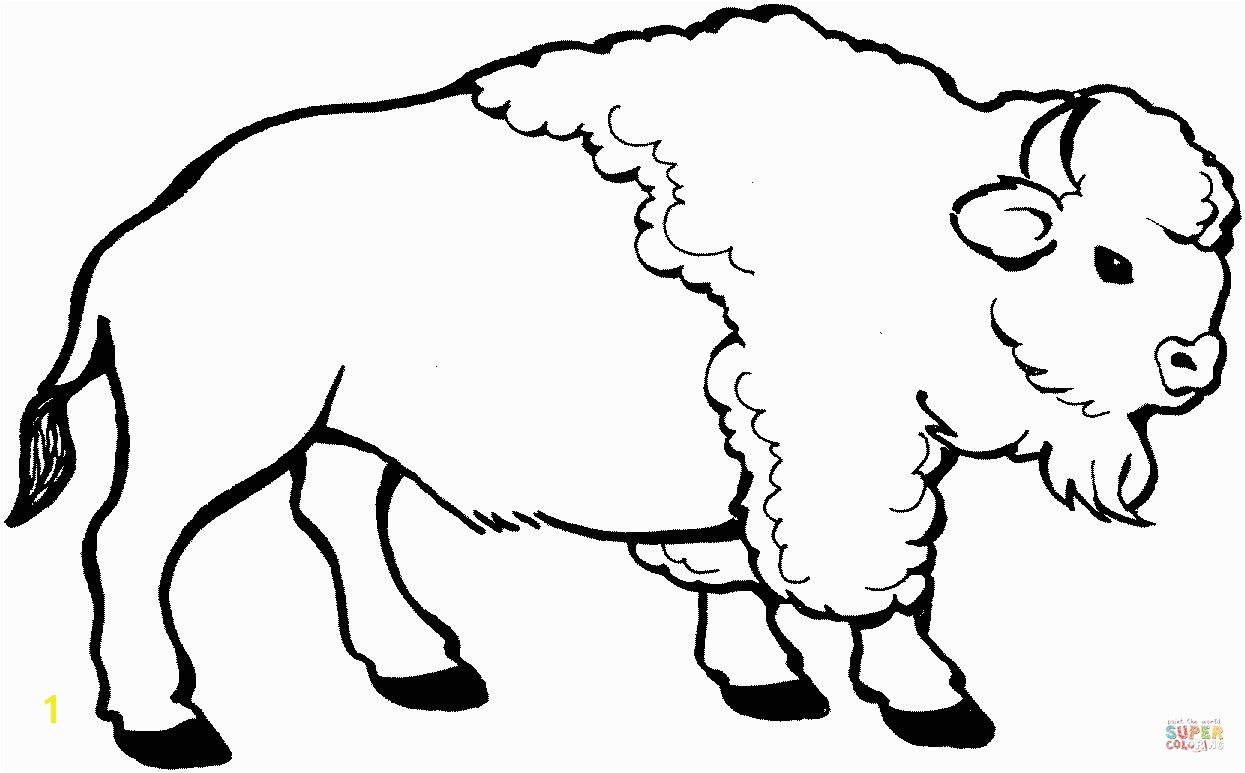 the Young bison coloring pages