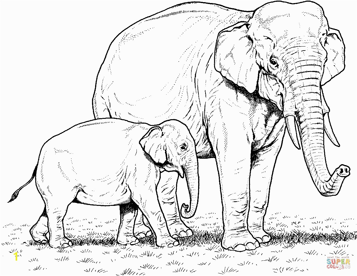 important pictures of elephants to color indian elephant baby and mother coloring page free printable