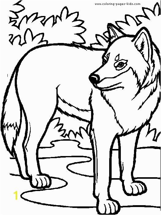 Avalon Web Magic Coloring Pages Lovely Wolf Coloring Pages for Kids Avalon Web