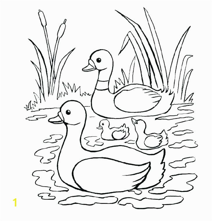 Baby Goose Coloring Pages Best Coloring Pages Ducks Baby Goose Coloring Pages Elegant Printable