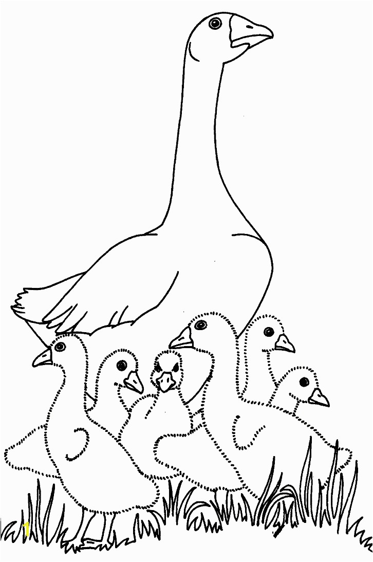 Baby Goose Coloring Pages Charlotte S Web Coloring Pages