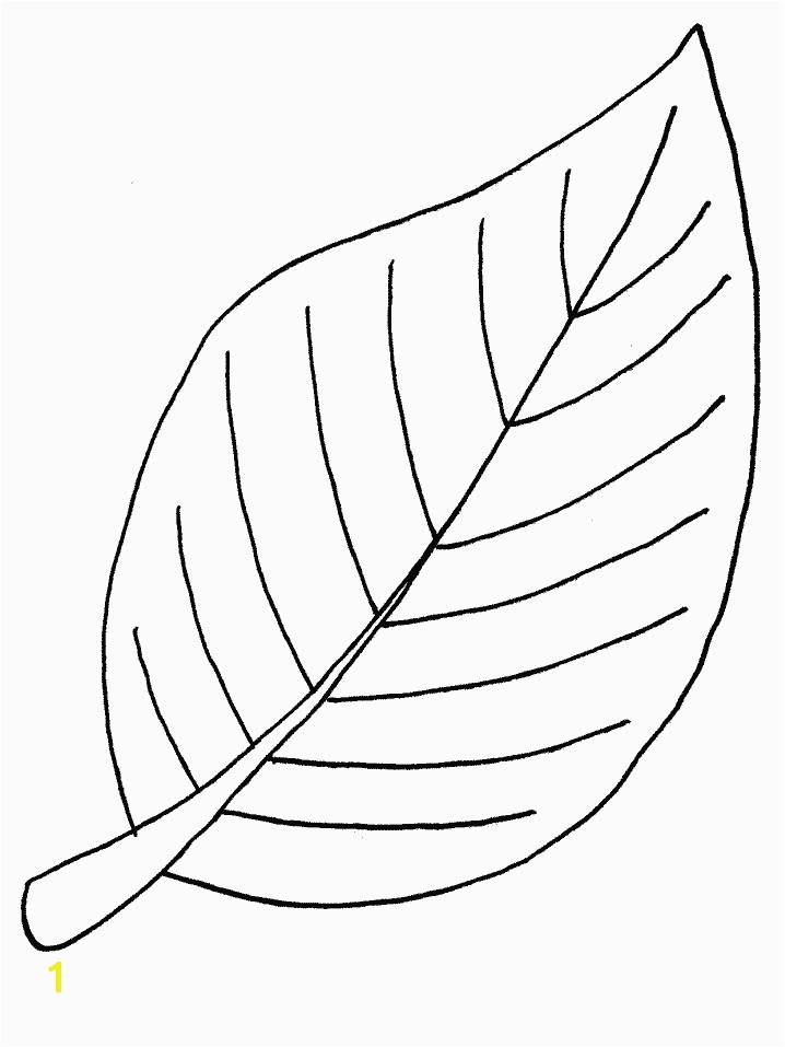 Free Printable Leaf Coloring Pages For Kids ClipArt Best ClipArt Best