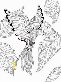 Dover Birds of Paradise Coloring Page 1