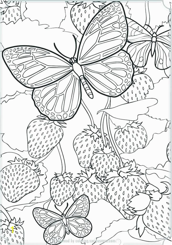 A butterfly Coloring Page Unique Coloring Pages Line New Line Coloring 0d Archives Con Scio – Fun Pics