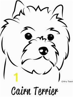 cairn terrier drawings Google Search