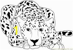 Cheetah Sitting coloring page Free Printable Coloring Pages