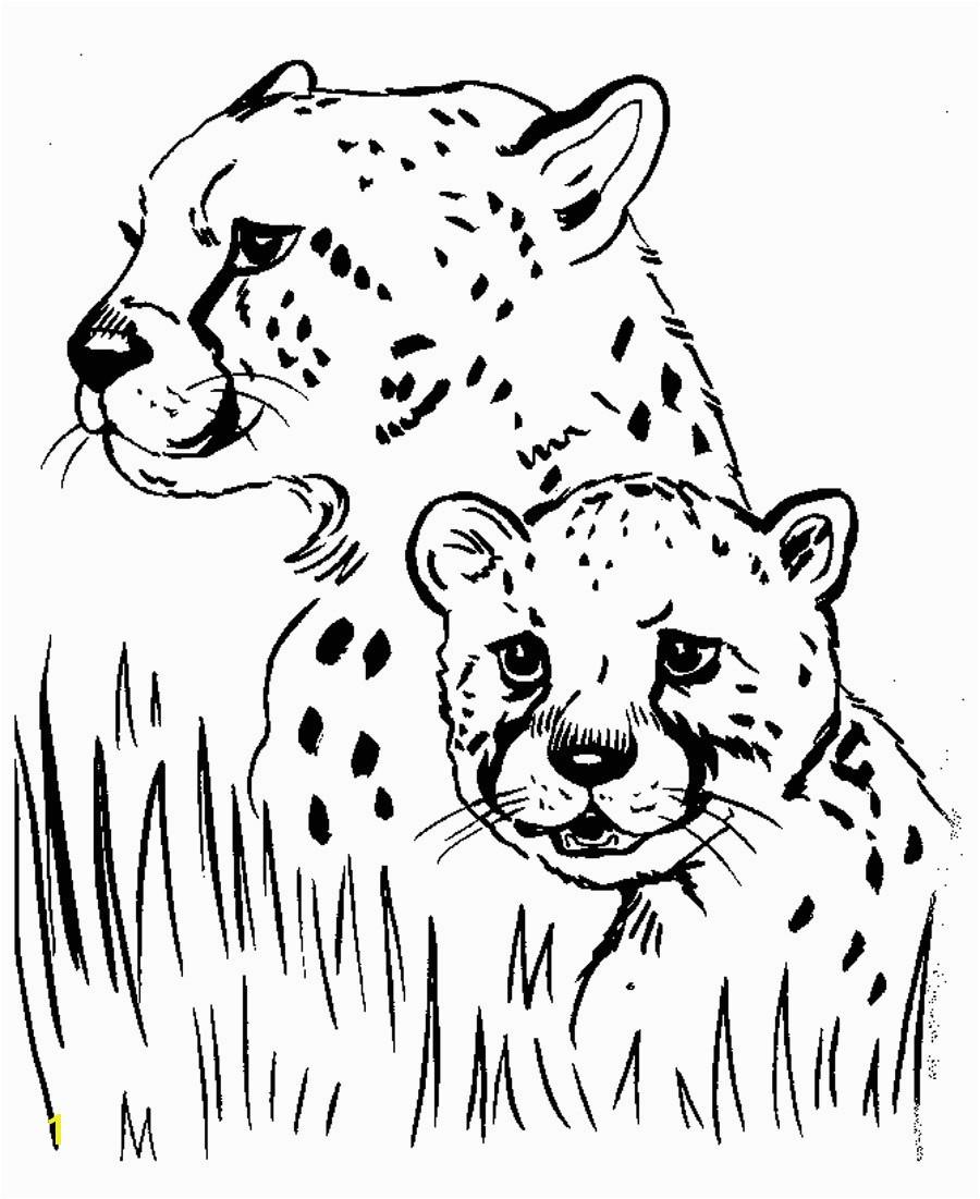 Cheetah Coloring Pages New Cheetah Coloring Sheet Download 17a Free Printable Cheetah Coloring Pages for