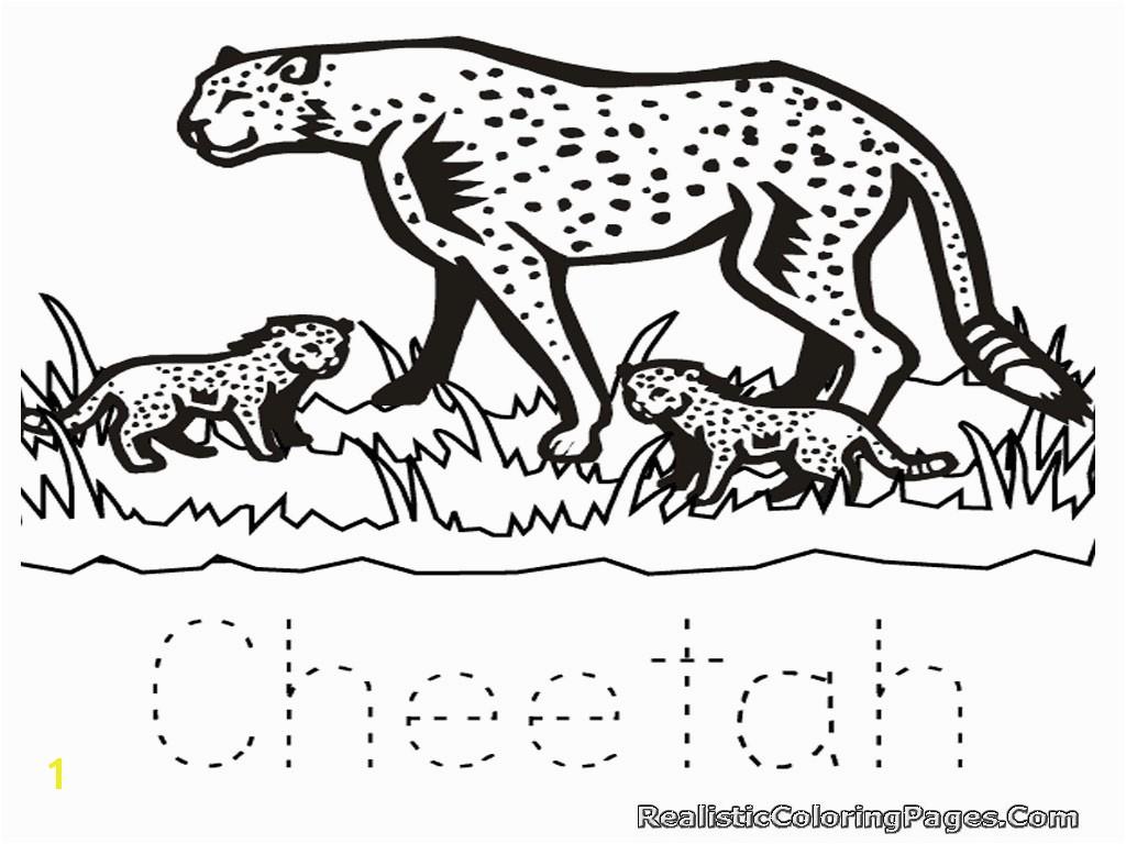 animal coloring pages cheetah