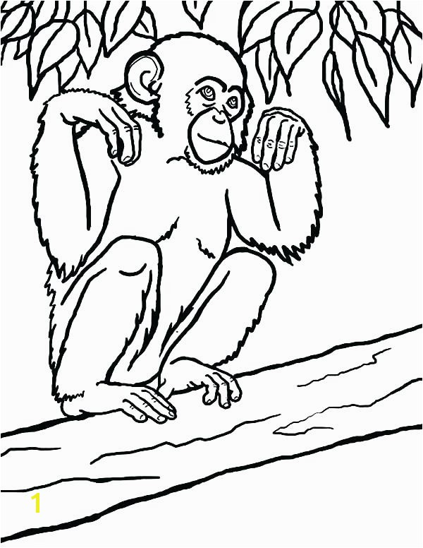 Chimpanzee Coloring Page Exclusive Chimpanzee Coloring Pages Happy Page Free Baby Chimpanzee Coloring Page Printable