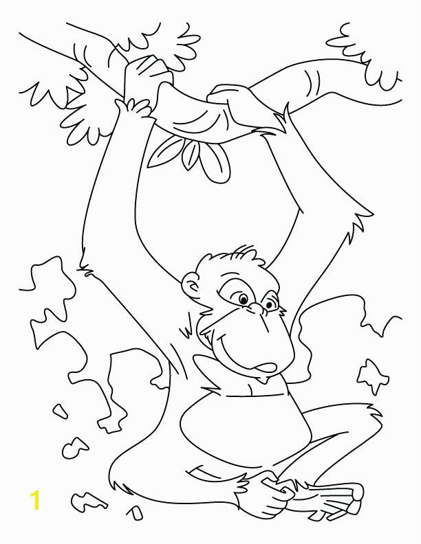Chimpanzee Coloring Pages Free