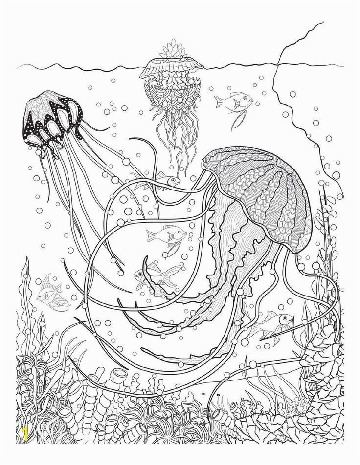 Coloring Page A River New Coloring Page A River Luxury Colorear Cangrejo 0d – Oldmintfo Stock