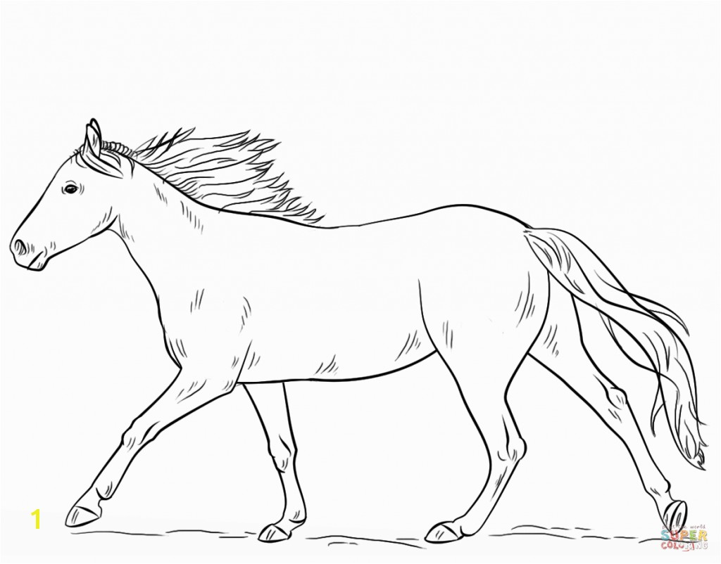 Valuable Coloring Page A Horse Running Free Printable Pages