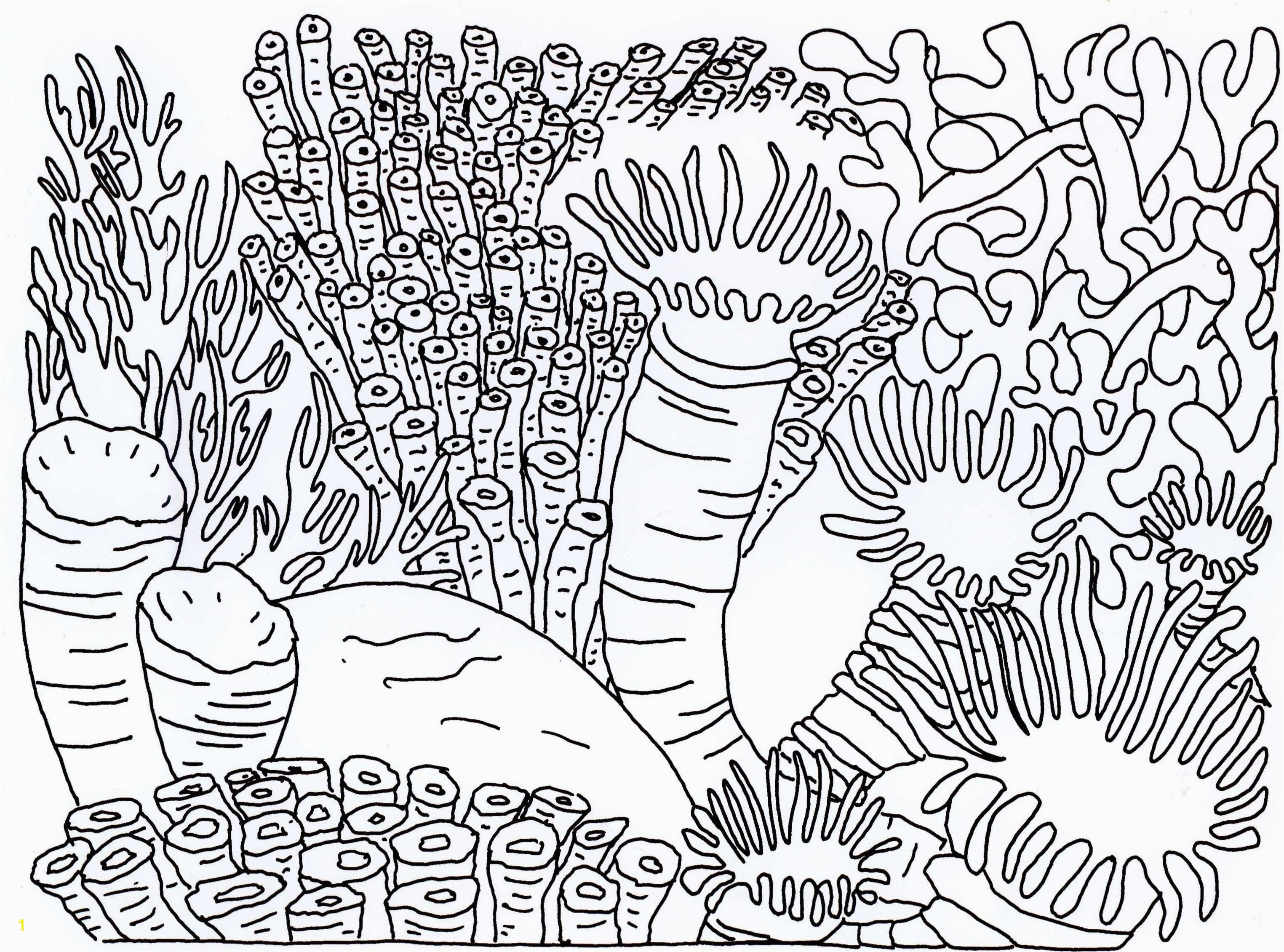 Coloring Pages Of Coral Reefs Best Coral Reef Coloring Page Coloring Pages