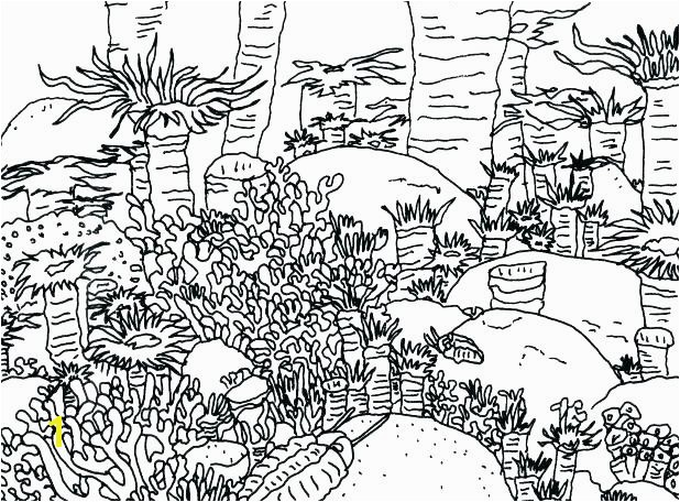 coral reef coloring pages coral reef coloring page coral reef coloring pages coral coloring page coloring