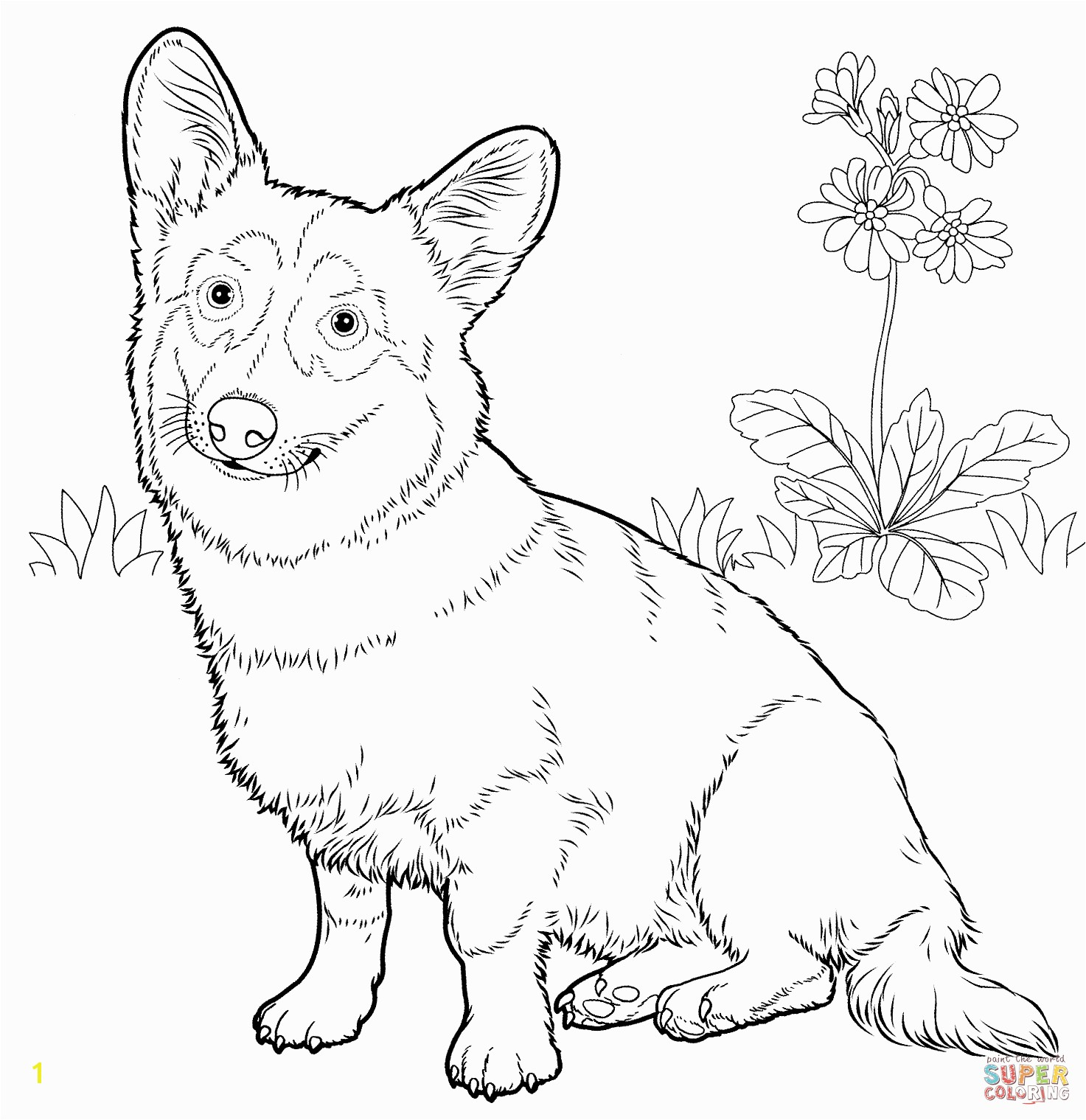 Free coloring pages of dog outline road trip Pinterest