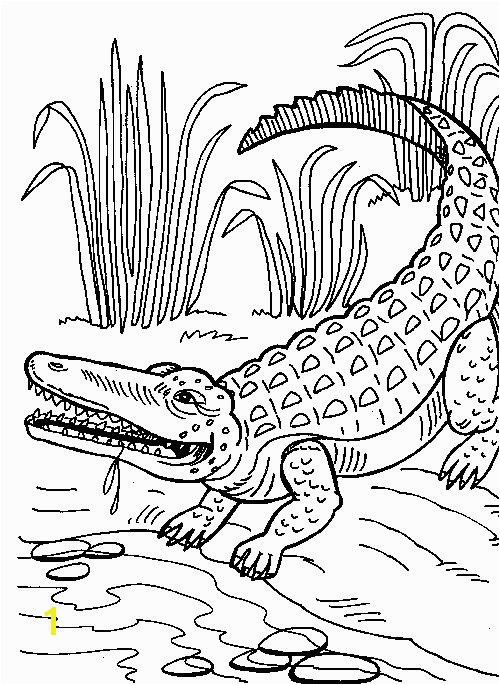 Coloring Pages Of Crocodiles Crocodile Coloring Pages to Print