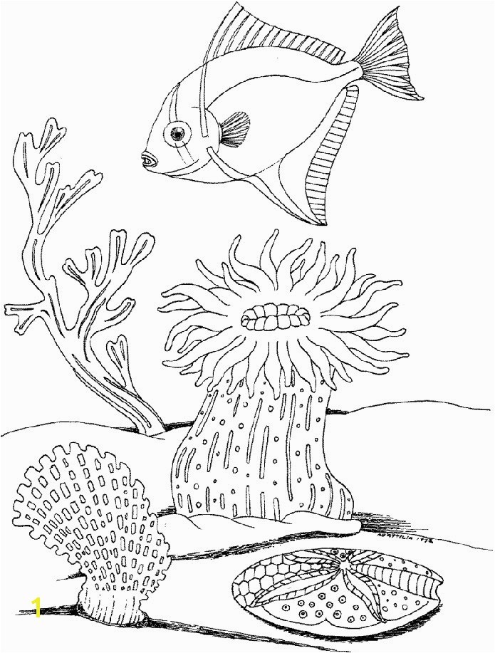 Fish Hooks Coloring Pages to Print Fresh Plants Coloring Pages Fish Hooks Coloring Pages to