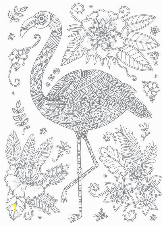 Swan Coloring Pages 237 Best Coloring Swan Flamingo Pinterest