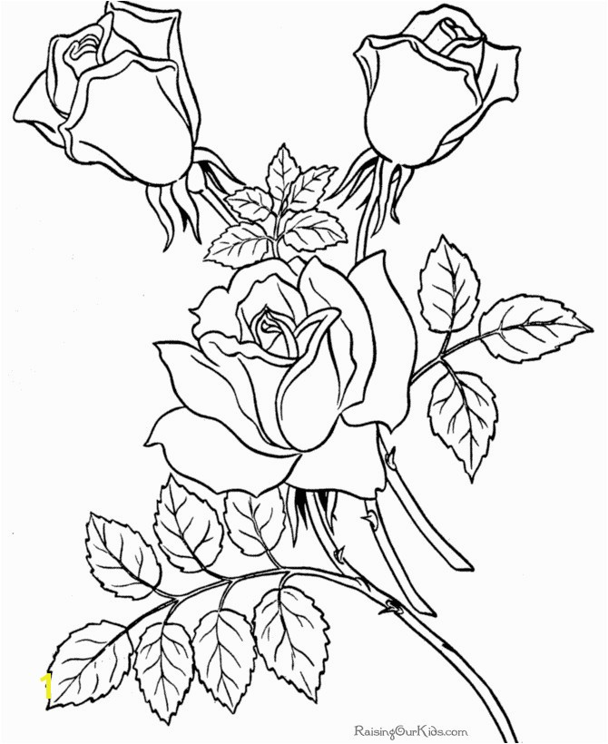 Coloring Pages Real Roses Best Free Coloring Pages Sheets Roses 007 Coloring