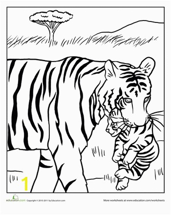 Great Worksheets Mama and Baby Tiger Coloring Page