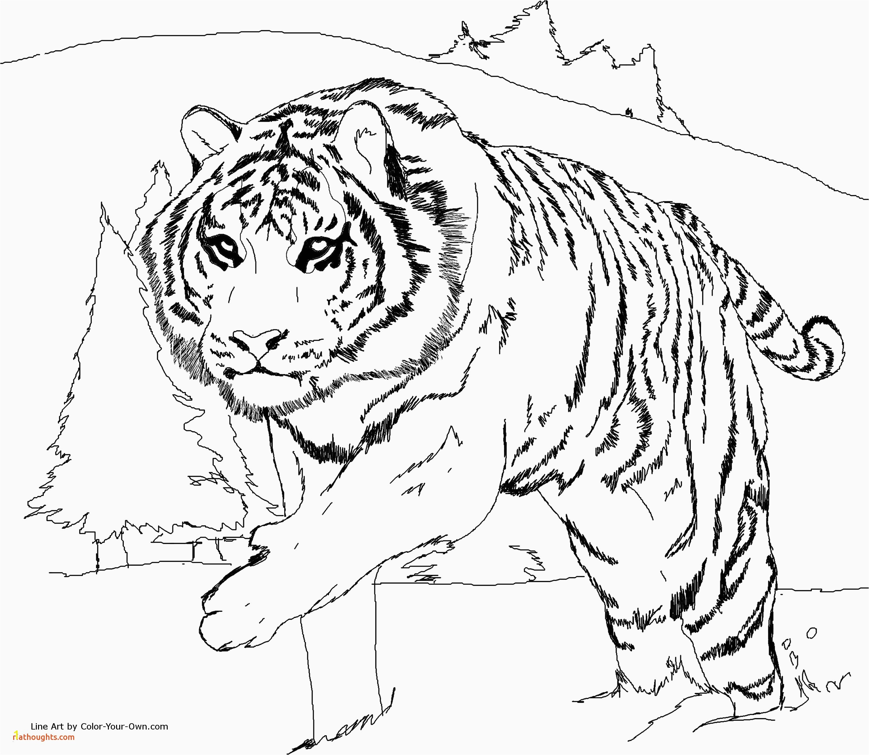 Tiger Cub Scouts Coloring Pages Tiger Coloring Pages Popular Awesome Tiger Coloring Pages Verikira