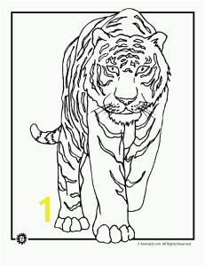 9 tiger coloring pages including tiger cubs wild tigers and cute cartoon tigers Part of an ongoing series of animal coloring page sets