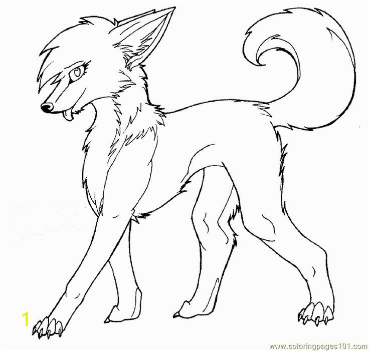 Coloring Pages Of Wolfs 12 Best Outline Wolves Pinterest Wolf Coloring Pages