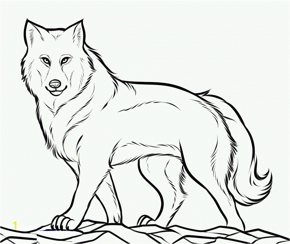 Revolutionary Wolf To Color Level Printable Coloring Pages Wolves Seomybrand