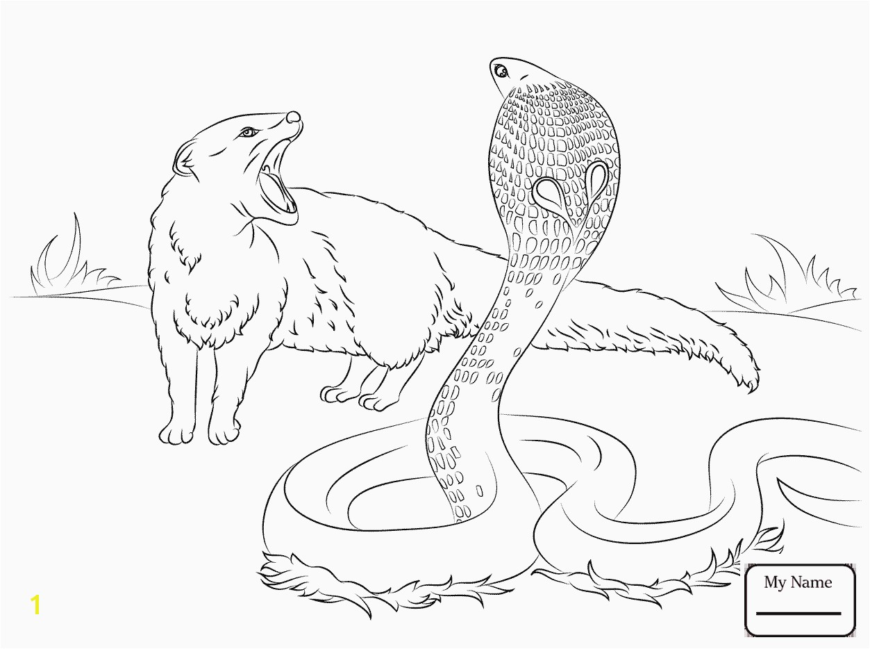 Cool Coloring Pages Of Animals Printable Animal Coloring Pages Awesome Drawing Printables 0d