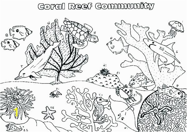 coral reef coloring pages simple coral reef coloring pages google search coloring pages coral reef fish