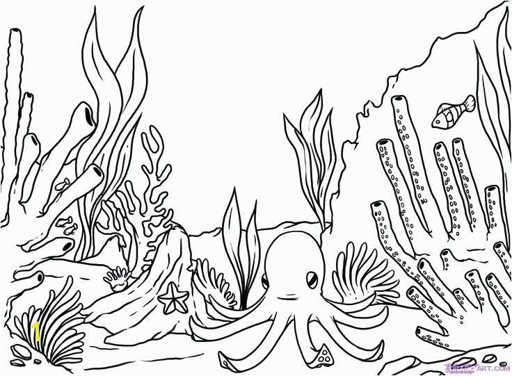 coral reef coloring pages coral reef coloring pages free simple coral reef coloring pages google search