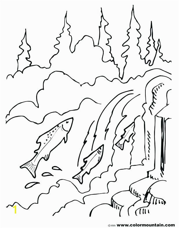 Chinook Salmon Coloring Page Awesome Chinook Drawing at Getdrawings Chinook Salmon Coloring Page Inspirational Authentic