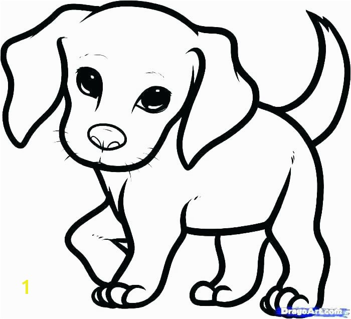 collection of coloring pages of puppy dogs them and try to solve