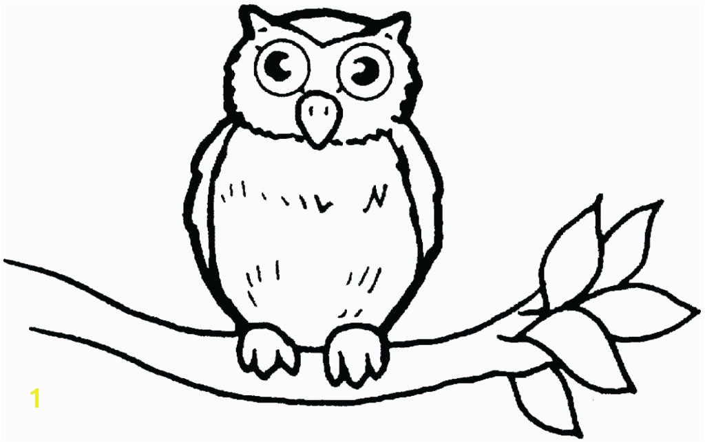 coloring pages of owls cartoon owl coloring pages cute owl coloring page owl colouring pages limited