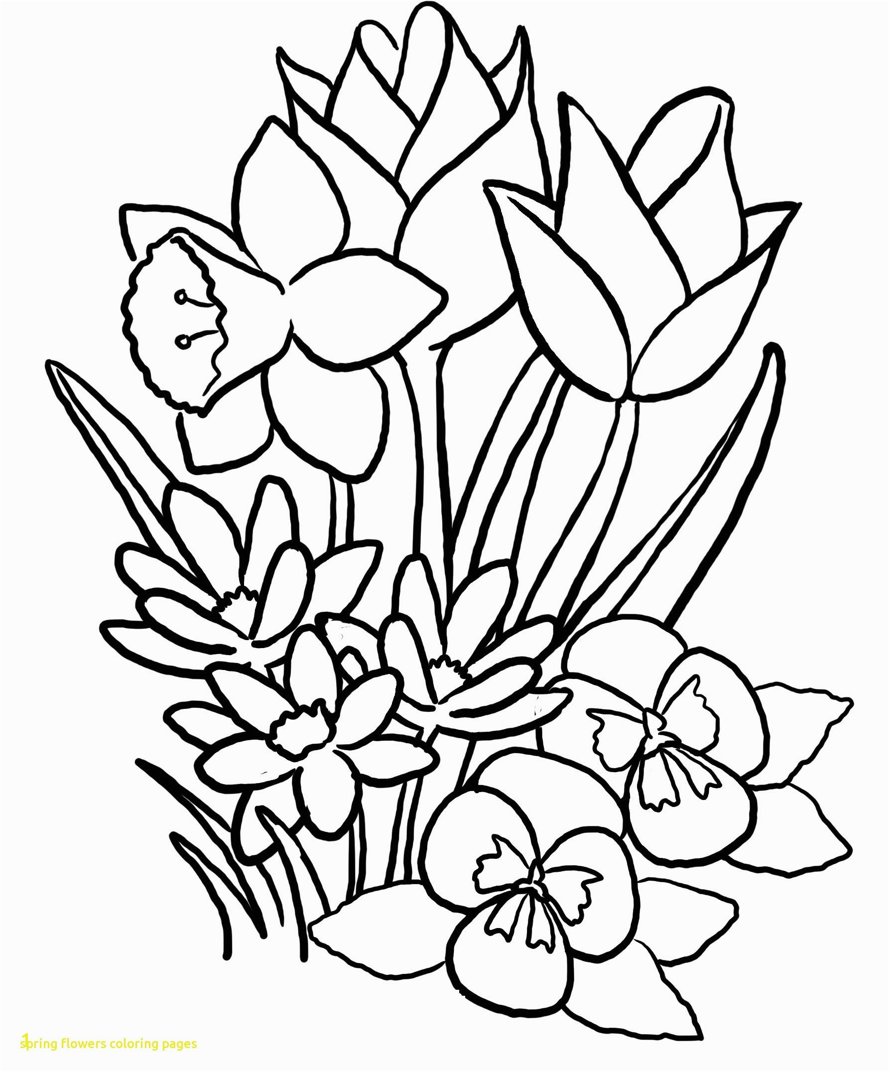 Labeled big spring flower coloring pages free free printable spring flower coloring pages free spring flower coloring pages free spring flower coloring