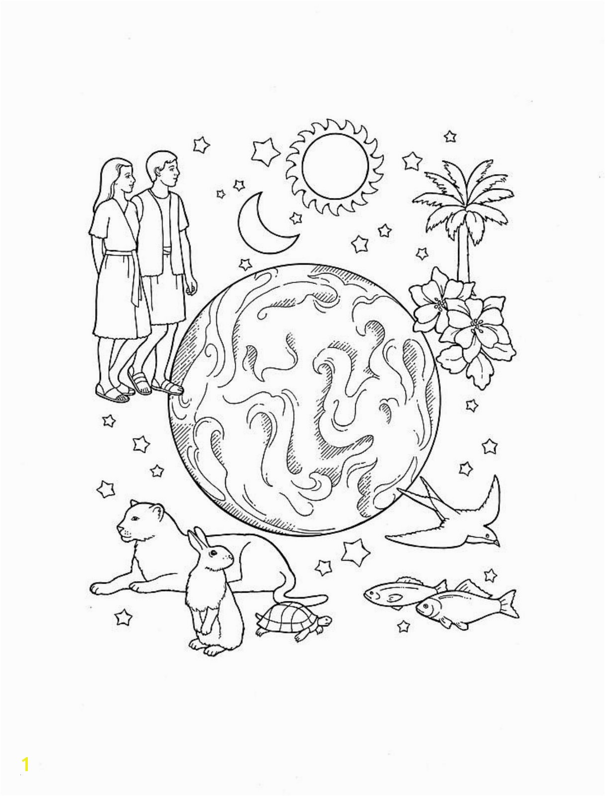 15 Elegant Day 6 Creation Coloring Page graph