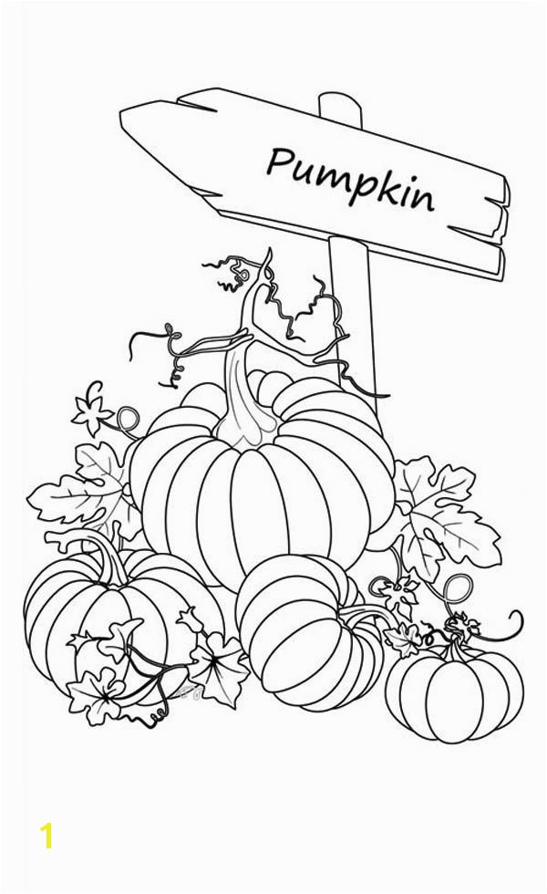 Pumpkins Sign of Pumpkins Garden Coloring Page