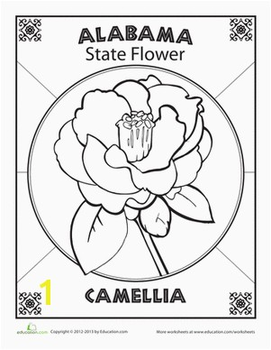 Delaware State Flower Coloring Page Alabama State Flower School Ideas Pinterest
