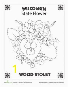 State Flower Coloring Pages Delaware State Flower Coloring Page – Classroom Jr Needlework States Pinterest