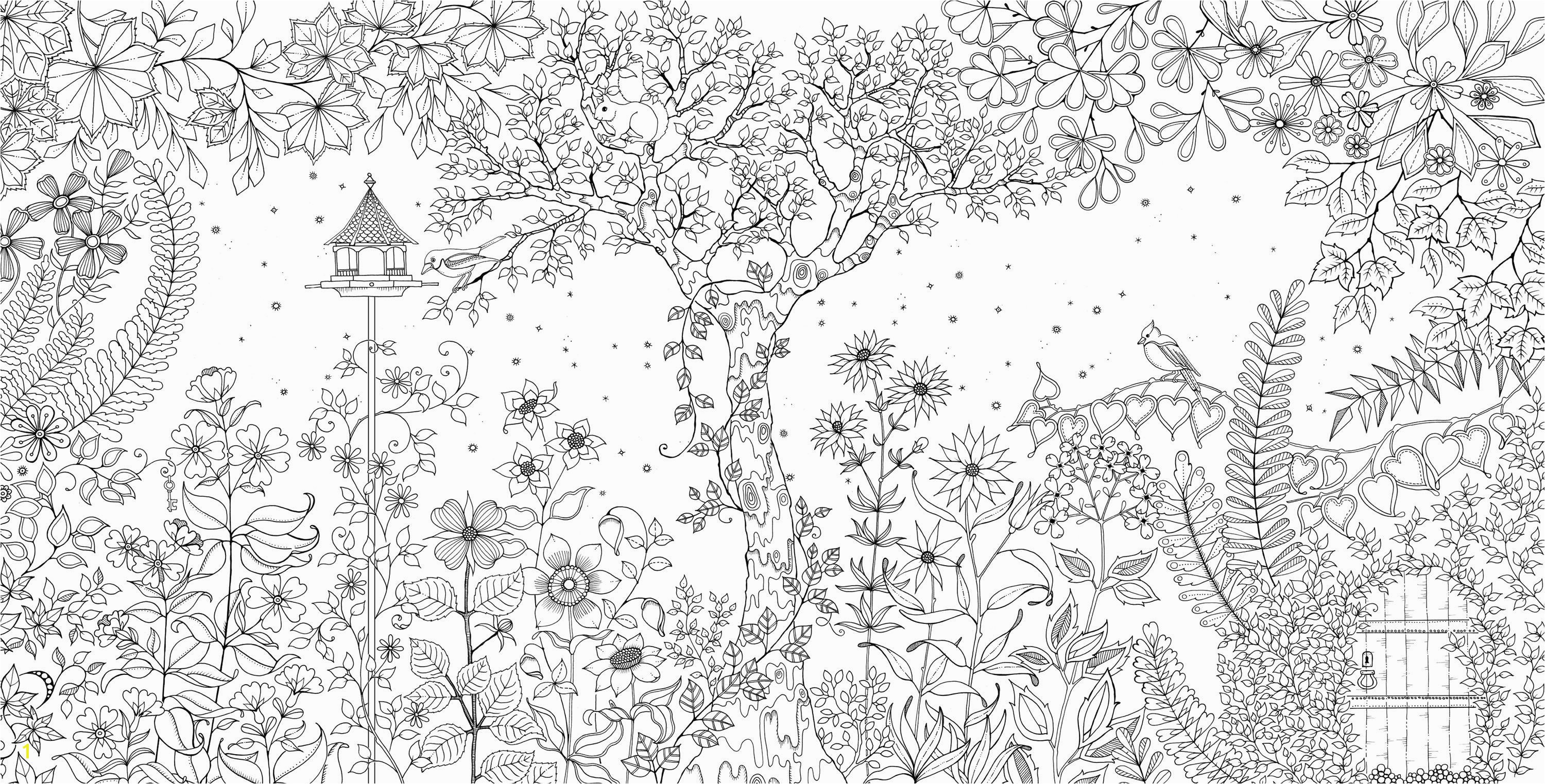 Colouring books created by Johanna Basford Secret Garden and Enchanted Forest are topping the Amazon best seller list Description from pinterest