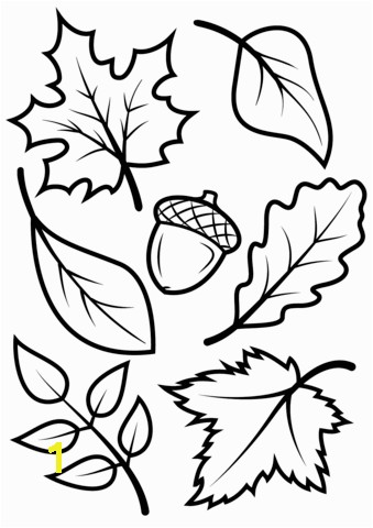 Fall Leaves Coloring Pages Free Fall Leaves and Acorn Coloring Page From Fall Category Select From