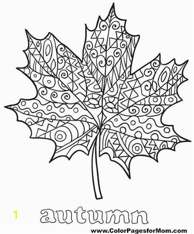 Best Autumn Leaves Coloring Pages for Kids for Adults In Coloring Pages Leaves Autumn Best Coloring