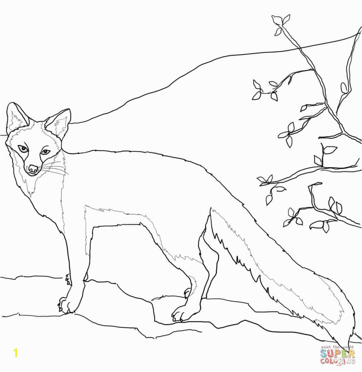 Fennec Fox Coloring Page Foxes Coloring Pages