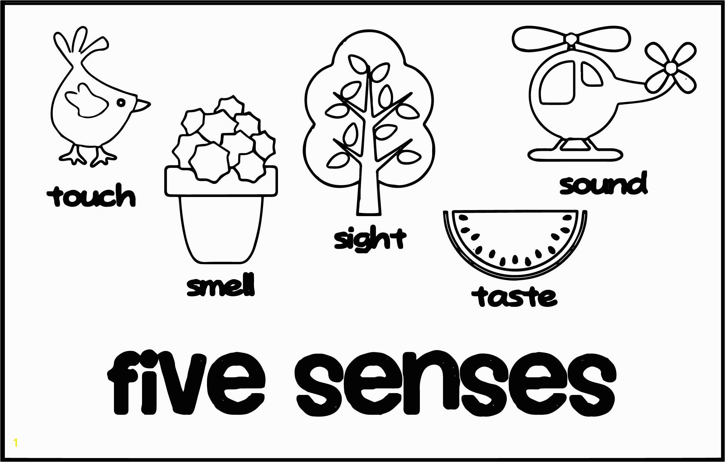5 senses coloring sheet marvelous senses cute coloring page wecoloringpage image of inspiration and trend